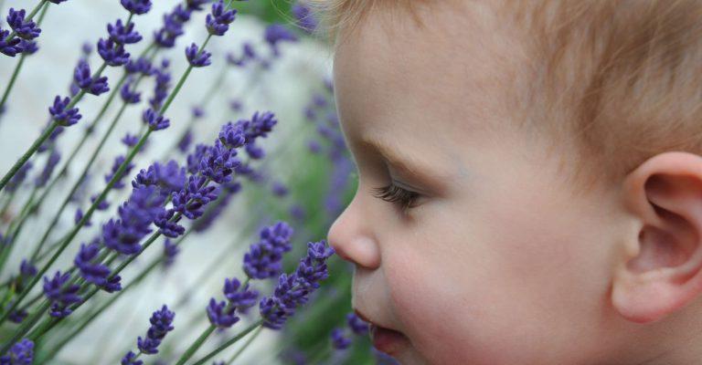 bambini e aromaterapia