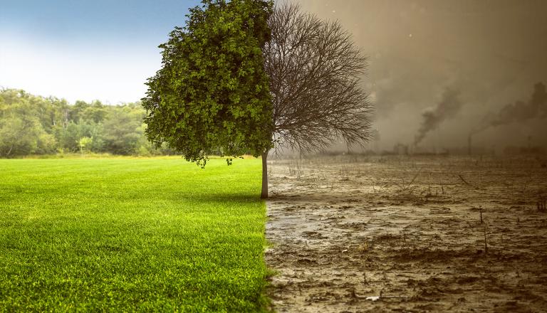 Inquinamento atmosferico in Italia: quali rischi per la salute?